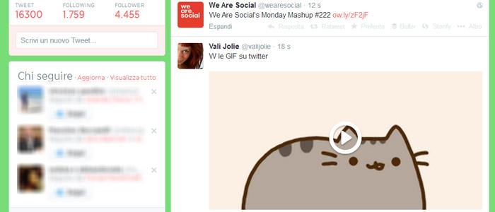 GIF tweet