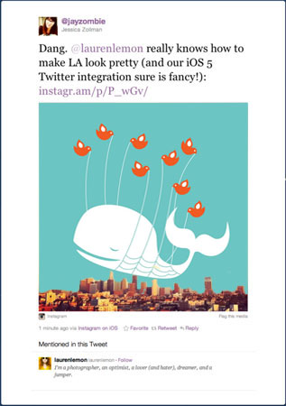 visualizzazione instagram twitter